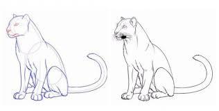 Lezioni Di Disegno Con I Bambini Come Disegnare Una Lepre A Matita