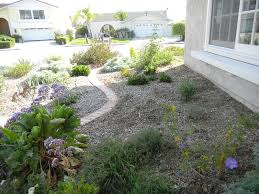 Small Picture A Native Garden Design