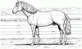 Small Picture Coloring Pages Horse Coloring Pages Animals Printable Coloring