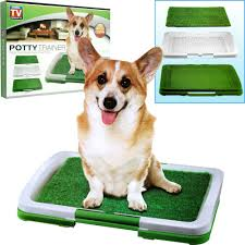 dogs bathroom grass. puppy potty trainer indoor grass training patch - 3 layers trainin: amazon.ca: home \u0026 kitchen dogs bathroom