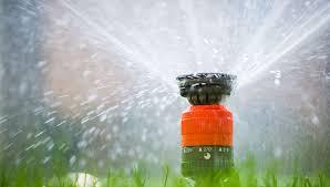 Image result for installation process of sprinkler systems