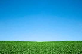 green grass blue sky.  Green Lush Green Grass And Cool Blue Sky Background Throughout Green Grass Blue Sky E