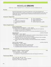 Example College Resume Extraordinary Examples Of College Resumes Elegant Resume For Financial Analyst