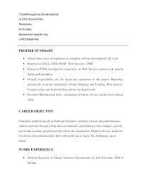 Resume Profile Examples Custom Profile Example For Resume Executive Summary Resume Resume Profile