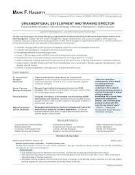 Value Statement Example For Resumes Resume Personal Wikirian Com