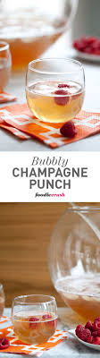 Best 25 Champagne Punch Recipes Ideas On Pinterest  Christmas Party Cocktails For A Crowd