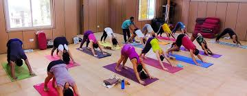 300 hours yoga teacher india