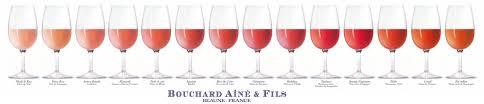 Wine Color Complete Visual Guide Social Vignerons