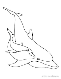 Dolphin Tale Coloring Pictures Ourwayofpassioncom