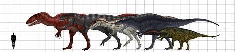 carcharodontosaurus size carcharodontosauridae size chart featuring carcharodontosaurus
