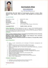 How To Make Curriculum Vitae 24 Sample Of Curriculum Vitae For Job Application Pdf Basic How To 22