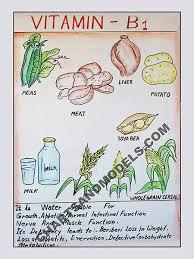 Vitamin B1 Food Chart Buy Vitamin B1 Charts Online Buy Vitamin B1 Charts Online