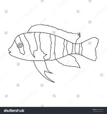 Small Picture Frontosa Cichlid Cyphotilapia Frontosa Fish Icon Stock