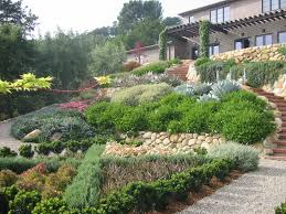 Small Picture looking up tiered slope garden Landscaping Water Wise