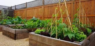 orange county edible gardens