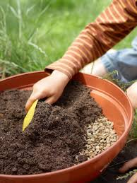 how to plant a garden. 1. Put Gravel In The Container. How To Plant A Garden L