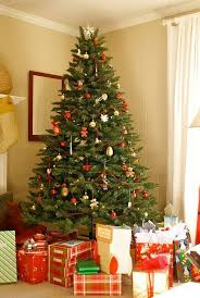 A nice Christmas tree is essential to any decorated house. Here you can  learn all the essentials about trees, which species are best, how to care  for them, ...