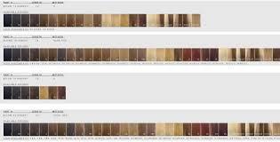 Bohyme Color Chart Amazon Com Bohyme Color Chart Hair Extensions Beauty