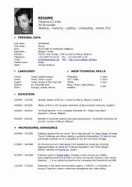 3d Artist Resumes Professional Resume Templates