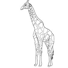 Giraffe Coloring Pages To Print Giraffe Coloring Pages Inspiring