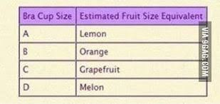 Breast Size Chart Fruit Ladies And Gentlemen The Boob Chart 9gag