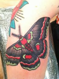 Pretty Colourful Moth Tattoo On Leg Tattooimagesbiz