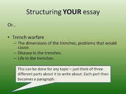 informative writing a guide informative writing some general  structuring your essay or
