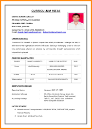Job Application Resume Sample Pdf Download Cv Vozmitut