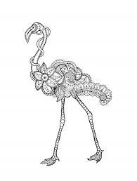 Kleurplaat Flamingo S Ausmalbild Kuba Flamingo Ausmalbilder