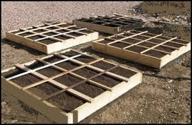 a square foot gardening layout with