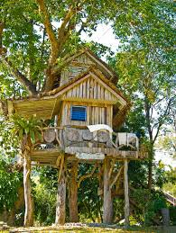 Modern Magic Building A Treehouse For Kids Plans U0026 PicsTreehouses For Children