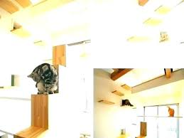 cat wall climbing systems wall mounted cat stairs cat stairs on wall cat wall perch cat cat wall