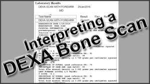 Interpreting A Dexa Bone Scan