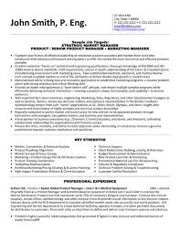 click here to download this strategic market manager resume template httpwww engineering executive resume