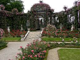 The Garden Aesthetic | \