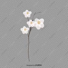 無料ダウンロードのための白い花の白い花 アイデアの花 花飾り 花釦元素