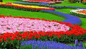 Small Picture Flower Garden Design Ideas geisaius geisaius