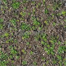 dirt grass texture seamless. Dirt Grass Texture Seamless