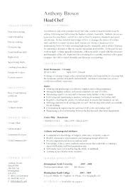 Professional Objective For Culinary Resume Chef Template