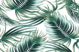 Palm Leaf Pattern Simple Tropical Palm Leaves Pattern Graphic Patterns Creative Market