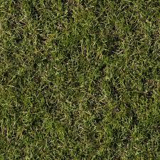 Dirt grass texture seamless Green Grass 1600x1600 High Resolution Seamless Textures Seamless Grass Texture Grass Texture 46 Images On Genchiinfo