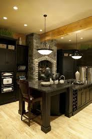 Kitchen Countertop Lighting 52 Dark Kitchens With Dark Wood And Black Kitchen Cabinets