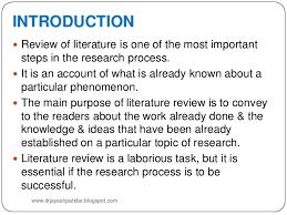 Literature Review   LinkedIn Raul Pacheco Vega  PhD