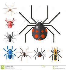 Tarantula Web Design Spider Web Silhouette Arachnid Fear Graphic Flat Scary