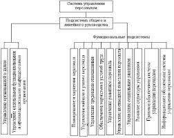 Дипломная работа Совершенствование кадрового менеджмента на   разработка кадровой политики и стратегии управления персоналом анализ кадрового потенциала анализ рынка труда организацию кадрового планирования