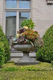 Download Small Succulent Garden  Solidaria GardenSucculent Container Garden Plans
