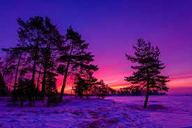 Winter Sunset Wallpapers