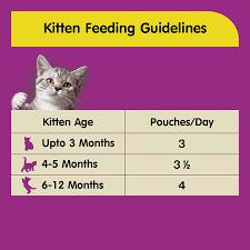 Kitten Feeding Chart Whiskas Wet Meal Kitten Cat Food Chicken In Gravy 85 G