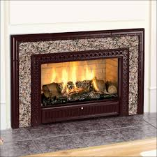 full size of furniture fabulous gel fireplace insert lovely ventless gas fireplace inserts image re large size of furniture fabulous gel fireplace insert
