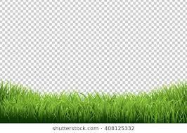 transparent background. Plain Transparent Green Grass Border Isolated On Transparent Background Inside P